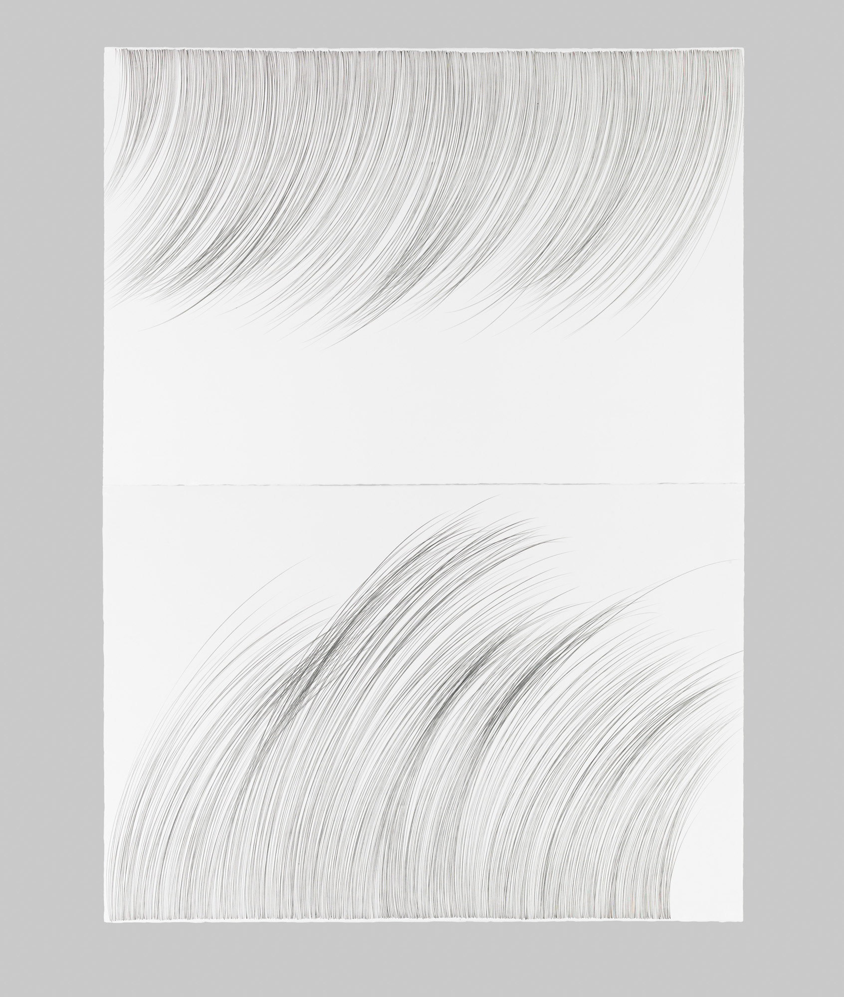 Large RainGrass, I   Graphite on cotton paper, 60 x 44 inches, diptych, 2015