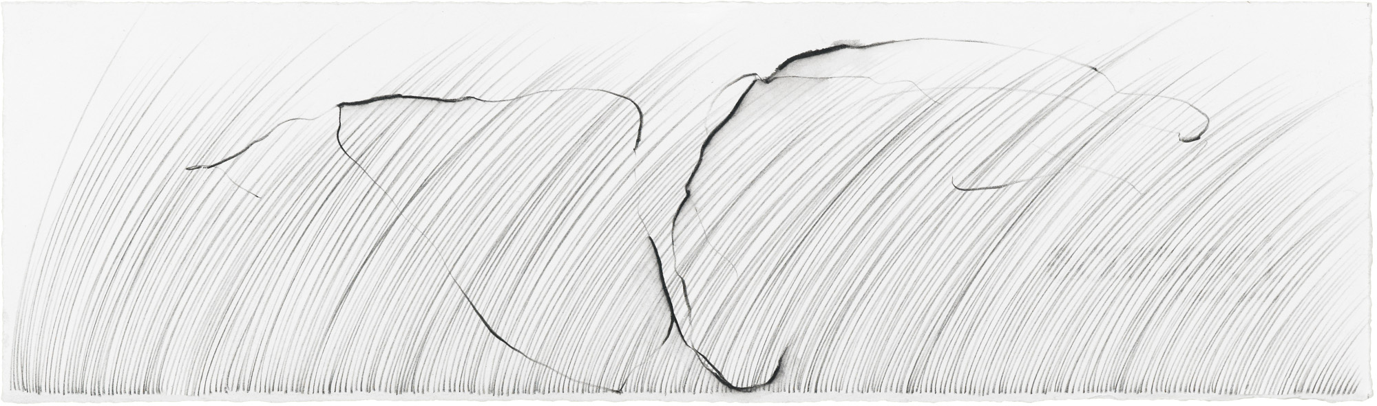 Grass Being, I   graphite and soluble pencil on cotton paper, 4 ¼ x 14 ½ inches, 2013