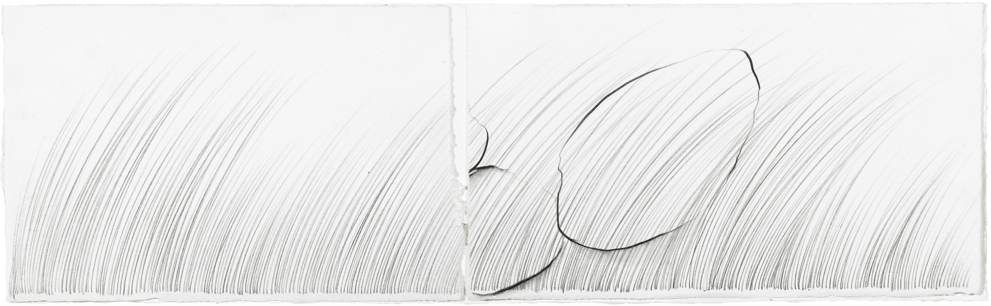 Grass Being, II   graphite and soluble pencil on cotton paper, collage, 4 ½ x 14 ¼ inches, 2013