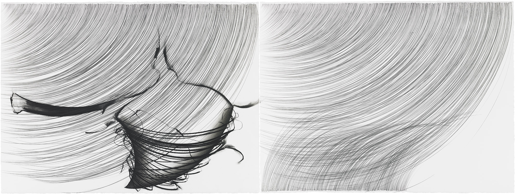 Bone Springs Rain Grass   graphite and pastel pigment on cotton paper, diptych, 22 ¼ x 60 inches, 2005